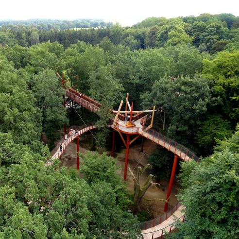 Blick von der Aussichtsplattform über den Wald © 2017 Betrieb für Bau und Liegenschaften Mecklenburg-Vorpommern
