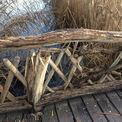 Die Schäden an den hölzernen Trägern sind deutlich sichtbar. © 2020 Staatliches Bau- und Liegenschaftsamt Schwerin