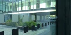Flur im Erdgeschoss mit Blick in den begrünten Innenhof © 2020 Staatliches Bau- und Liegenschaftsamt Greifswald