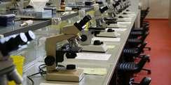 Arbeitsplätze für 125 Studenten - modern ausgestattete Laborarbeitsplätze im einzigen Saal dieser Art in Rostock. © 2010 Betrieb für Bau und Liegenschaften Mecklenburg-Vorpommern