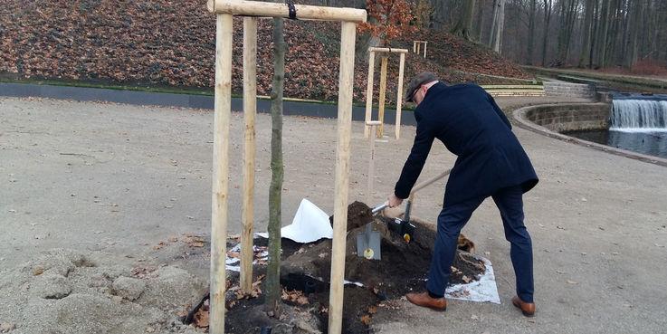 Robert Klaus vom BBL M-V bedeckt die Wurzeln der letzten Bäume  die an den 24 Wassersprüngen gepflanzt worden sind. © 2018 Betrieb für Bau und Liegenschaften Mecklenburg-Vorpommern