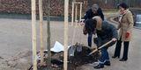 Am 22. November 2018 fanden die Arbeiten im Schlosspark ihr vorläufiges Ende. © 2018 Betrieb für Bau und Liegenschaften Mecklenburg-Vorpommern