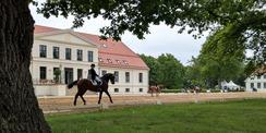 Auf dem Rücken der Pferde liegt das Glück dieser Erde - hier zum Beispiel im Landgestüt Redefin. © 2020 Staatliches Bau- und Liegenschaftsamt Schwerin
