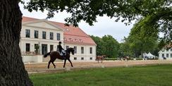 Auf dem Rücken der Pferde liegt das Glück dieser Erde! Das SBL Schwerin setzt Bauprojekte auch für Dritte um - hier zum Beispiel im Landgestüt Redefin. © 2020 Staatliches Bau- und Liegenschaftsamt Schwerin