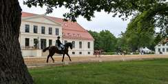 Auf dem Rücken der Pferde liegt das Glück dieser Erde - hier zum Beispiel im Landgestüt Redefin. © 2021 SBL Schwerin