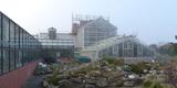 Die historischen Gewächshäuser im Hintergrund  vorn und seitlich ergänzt durch spätere Anbauten © 2020 SBL Greifswald