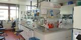 Blick in ein Labor. © 2020 Staatliches Bau- und Liegenschaftsamt Greifswald
