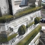 Grüne Beläge aus Moos und Flechten auf der Fassade © 2021 SBL Schwerin