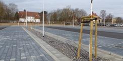 Blick Richtung Nordwesten - 32 Schwedische Mehlbeeren wurden auf der neuen Stellplatzanlage gepflanzt © 2021 SBL Greifswald