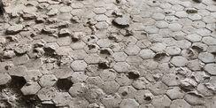 Beim Abbruch des vorhandenen Estrichs im Nordflügel wurde ein alter Fußboden aus Pflastersteinen entdeckt. © 2021 SBL Neubrandenburg