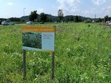 Patenschaftsfläche in Walding.jpg