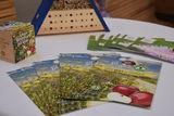 BioBienenApfel unterstützte uns mit Broschüren, Goodies und frischen Äpfeln..jpg