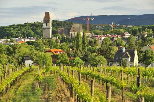 rundschau - Marktgemeinde Perchtoldsdorf